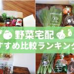 野菜宅配おすすめ比較ランキング!