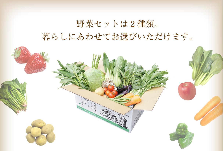 ミレー野菜セット